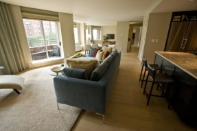 333 Rector 3 Bed Living Room 6