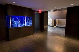 333 Rector Elevator Loby Fish Tank