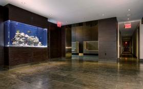 333 Rector Lobby Fish Tank 1